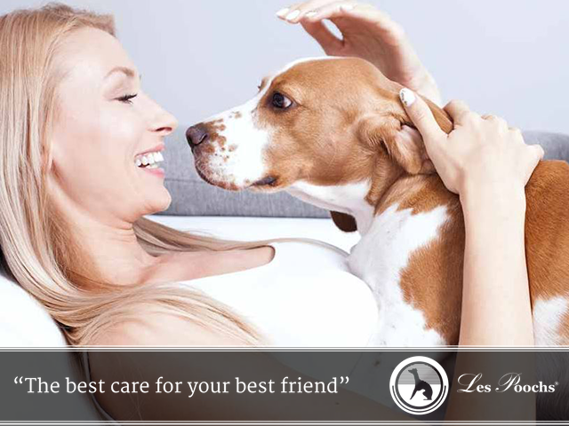 connecting-with-your-dog
